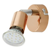 Eglo 94772 - LED Spotlamp BUZZ-COPPER 1xGU10/3W/230V