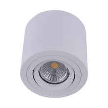 Emithor 48606 - Plafond-Spot SURFACE 1xGU10/50W/230V