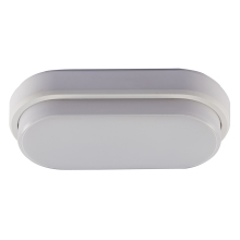 LED Buiten plafondlamp LED/12W/230V IP54