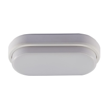 LED Buiten plafondlamp LED/8W/230V IP54